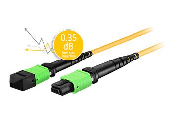 Customized MTP/MPO Fiber Cables 0.35dB Ultra Low IL+ US Conec Connector