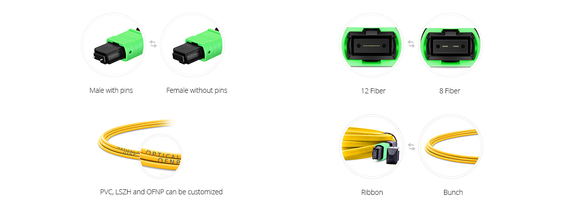 Customized MTP/MPO Fiber Cables  Custom and OEM Services