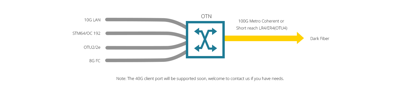 Customized OTN System  Best 100G Multiprotocol Multirate for High Capacity Optical Network