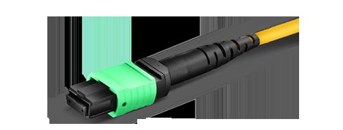 Cables MTP®/MPO personalizados Push-on de terminación de multi-fibra