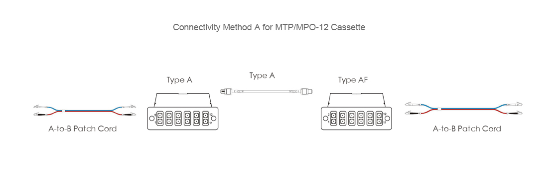 FHD MTP-LC Cassettes  Maintaining Polarity in Cassette-Based Systems
