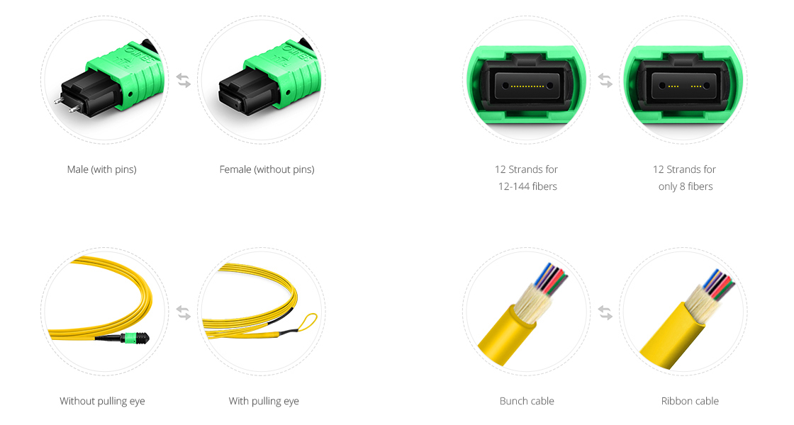 Customized MPO Fiber Cables  Custom Services to Satisfy All Your Needs