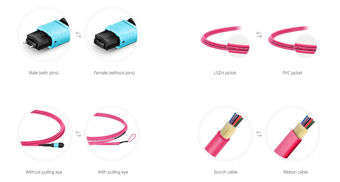 Câbles Optiques MTP Personnalisés  Services Personnalisés pour Répondre à Tous Vos Besoins