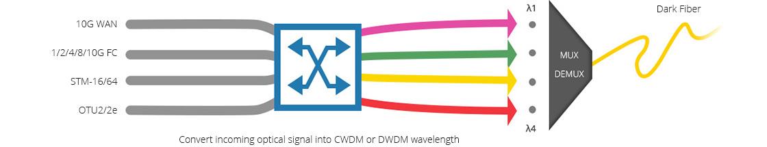 Transpondedor (OEO) 10G/25G Excelente transpondedor que soporta la conversión de longitud de onda para redes WDM