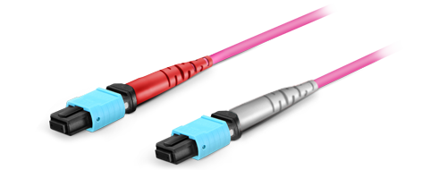 MTP® Conversion Cables  US Conec MTP® Connector