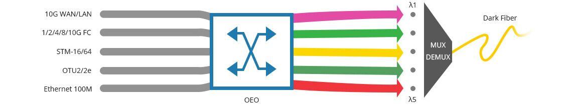 10G/25G Transponder (OEO) Flexibler Mix aus Services von 100Mbps bis 11,1Gbps