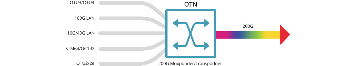 100G/200G Transponder/Muxponder 200G Capacity over Single Wavelength