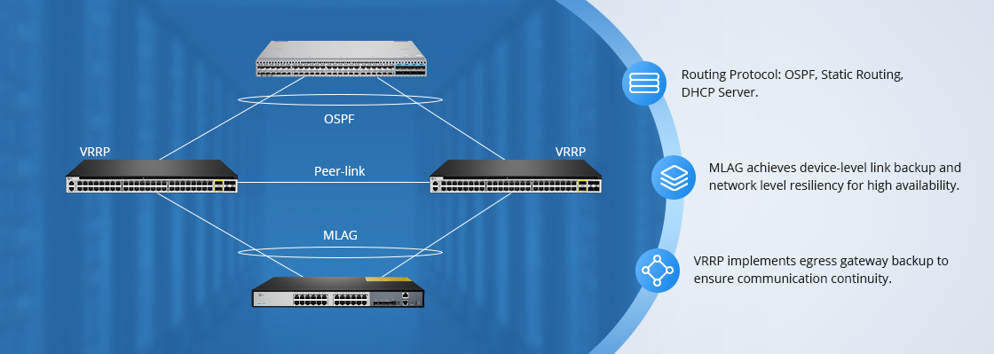 1G/10G Switches Layer 3 Protocols for Diverse Scenarios