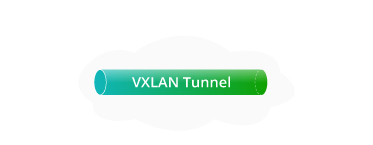 100G Switches <br>Tunnel of Layer 2 Overlay Virtual Network