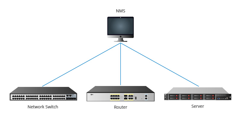 SNMP figure1.jpg