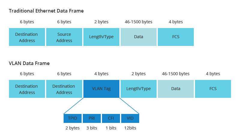 VLAN 3.jpg