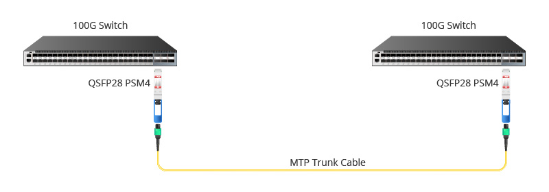 QSFP28 PSM4 100G to 100G Direct Connection.jpg