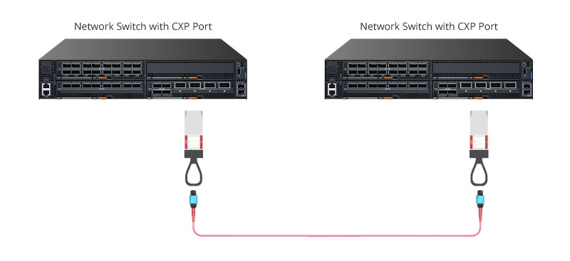 100G CXP 120G to 120G Direct Connection.jpg