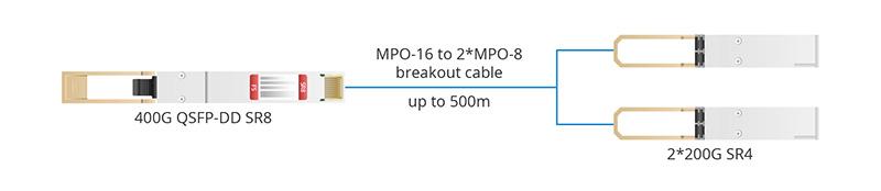 QSFP-DD SR8 to 2 200G SR4.jpg