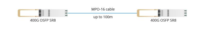 Figure 1 OSFP SR8 to OSFP SR8.jpg