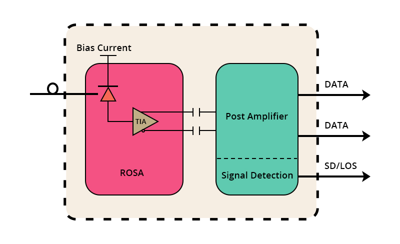 Figure 2 What is ROSA.jpg