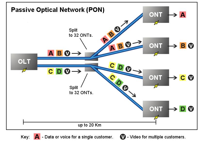 AON vs PON: PON netwrok