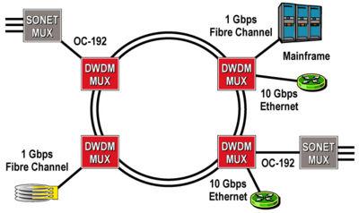 WDM-ring-topology