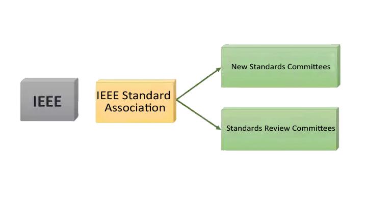 IEEE1