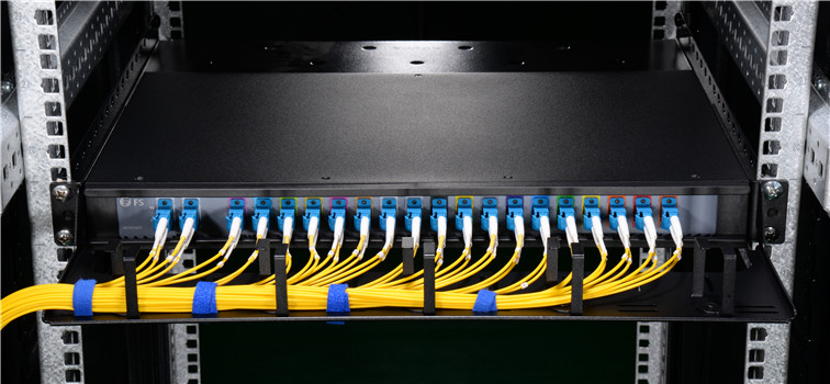 D-ring cable manager