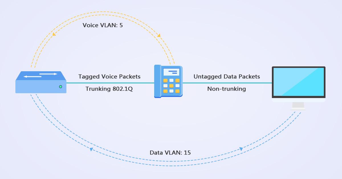 Voice VLAN Explained: Bacis, Configuration & FAQs | FS Community