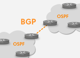 what is ospf vs bgp