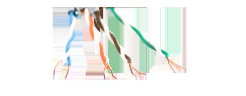 Cat5e Bulk Cables Solid Cable Design