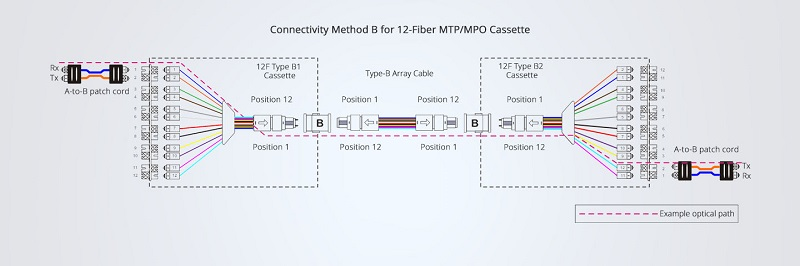12-strand method B polarity