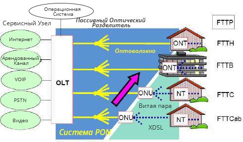 Компоненты-сети-PON