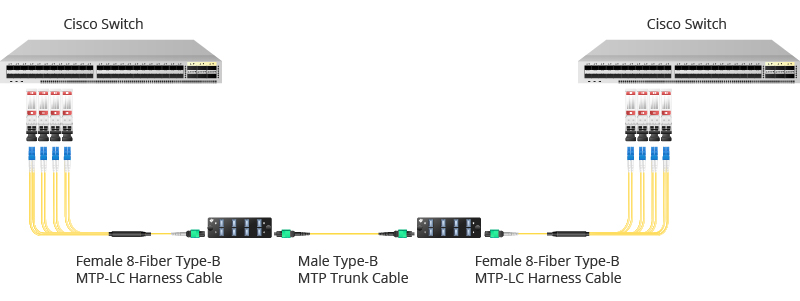 mtp type-b trunk cable and harness cable