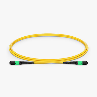 OS2 12F Type B Trunk Cable