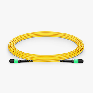 OS2 12F Type A Trunk Cable