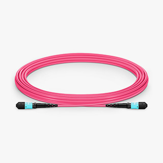 OM4 12F Type A Trunk Cable