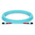 Customized 24-144 Fibers Senko MPO-24 OM3 Multimode Trunk Cable
