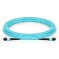Personnalisation de Câble Trunk 8-144 Fibres MTP®-12 OM3 Multimode