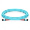 Cable troncal de fibra óptica OM3 multimodo 24 hilos MTP® 24-144 fibras personalizado - 3.0mm