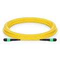 9m (30ft) MTP Male 12 Fibers Type A LSZH OS2 9/125 Single Mode Elite Trunk Cable, Yellow