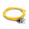 2m (7ft) FC UPC 12 Fibers OS2 Single Mode Bunch LSZH 0.9mm Fiber Optic Pigtail