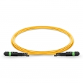 Customized Length MTP Female 12 Fibers Type A LSZH OS2 9/125 Single Mode Elite HD Trunk Cable, Yellow