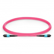 2m (7ft) US Conec MTP® PRO Male 12 Fibers Type B Plenum (OFNP) OM4 50/125 Multimode Elite Trunk Cable, Magenta
