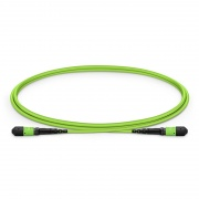1m (3ft) MTP®-12 (Female) to MTP®-12 (Female) OM5 Multimode Elite Trunk Cable, 12 Fibers, Type B, Plenum (OFNP), Lime Green