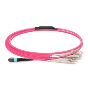 1m (3ft) MTP®-16 APC (Female) to 8 LC UPC Duplex OM4 Multimode Elite Breakout Cable, 16 Fibers, Plenum (OFNP), Megenta
