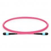 Personnalisation de Câble Trunk 16-32 Fibres MTP®-16 OM4 Multimode, Élite, Plénum (OFNP), Magenta
