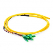 1.5m (5ft) LC APC 12 Fibers OS2 Single Mode Bunch PVC (OFNR) 0.9mm Fiber Optic Pigtail