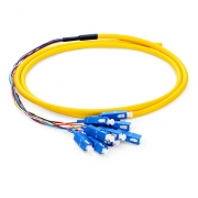 1.5m (5ft) SC UPC 12 Fibers OS2 Single Mode Bunch PVC (OFNR) 0.9mm Fiber Optic Pigtail