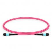 1m (3ft) MTP Female 12 Fibers Type B LSZH OM4 (OM3) 50/125 Multimode Elite Trunk Cable, Magenta