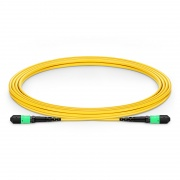 3m (10ft) MTP® Female 12 Fibres Type B LSZH OS2 9/125 Single Mode Elite Trunk Cable, Yellow