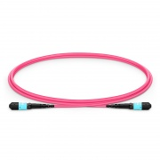 1m (3ft) MTP Female 12 Fibers Type B Plenum (OFNP) OM4 (OM3) 50/125 Multimode Elite Trunk Cable, Magenta