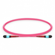 1m (3ft) MTP®- 24 (Female) to MTP®- 24 (Female) OM4 Multimode Elite Trunk Cable, 24 Fibers, Type A, Plenum (OFNP), Magenta