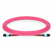 5m (16ft) MTP® Female 24 Fibers Type A (TIA-568) Plenum (OFNP) OM4 50/125 Multimode Elite Trunk Cable, 100GBASE-SR10 CXP/CFP/CPAK, Magenta
